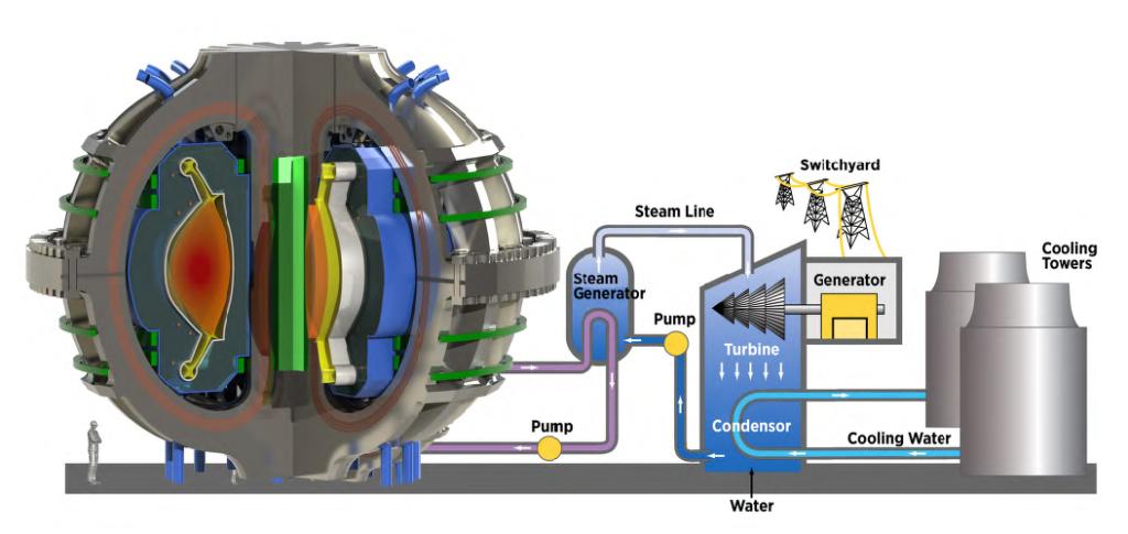 Una centrale a fusione potrebbe fornire energia pulita e priva di carbonio con un rifornimento di carburante sostanzialmente illimitato. Dal punto di vista della generazione di energia elettrica, il dispositivo di fusione è solo un'altra fonte di calore - da utilizzare in un normale ciclo di conversione termica. (Immagine da: Brochure MIT - SPARC)