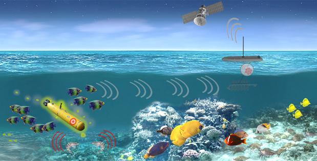 Il programma Persistent Aquatic Living Sensors (PALS) della DARPA punta a sfruttare le capacità di rilevamento naturali degli organismi marini allo scopo di monitorare quanto accade in acque di interesse strategico. (Immagine da DARPA)