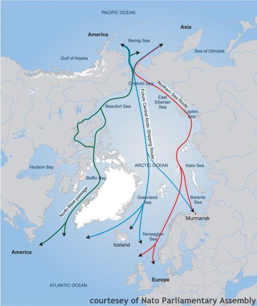 Le potenziali rotte marittime nella regione artica. (Fonte: Assemblea parlamentare NATO)