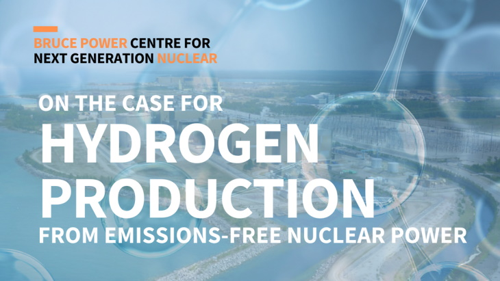 (Fonte: Nuclear Innovation Institute)